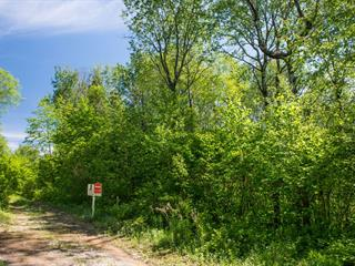 Terrain à vendre à Lac-Bouchette, Saguenay/Lac-Saint-Jean, 320, Chemin du Lac-Prinzèles, 9885100 - Centris.ca