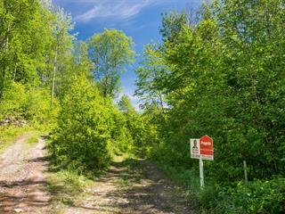 Terrain à vendre à Lac-Bouchette, Saguenay/Lac-Saint-Jean, 316, Chemin du Lac-Prinzèles, 10795682 - Centris.ca