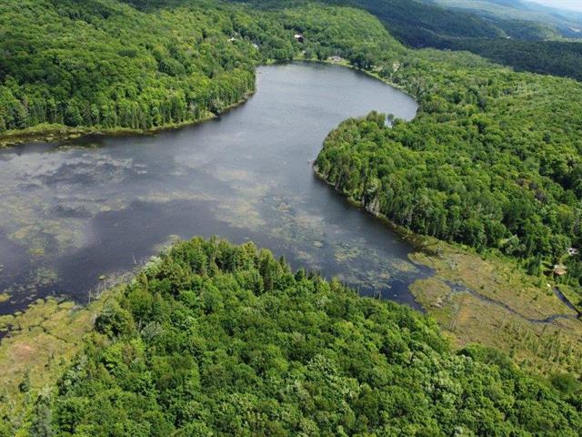 Terrain à vendre à Boileau, Outaouais, Impasse du Lac-Suffolk, 17974156 - Centris.ca