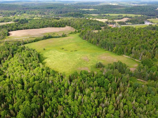 Terrain à vendre à Kazabazua, Outaouais, Route  105, 11107820 - Centris.ca