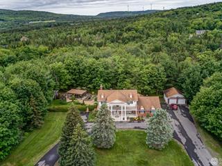 Maison à vendre à Thetford Mines, Chaudière-Appalaches, 3825, Chemin des Bois-Francs Est, 27520864 - Centris.ca