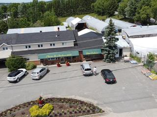 Commercial building for sale in Ville-Marie (Abitibi-Témiscamingue), Abitibi-Témiscamingue, 97, Rue  Sainte-Anne, 27284214 - Centris.ca