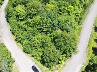 Terre à vendre à Shawinigan, Mauricie, Chemin du Domaine-Saint-Maurice, 24240372 - Centris.ca