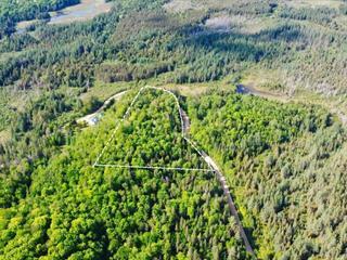 Terrain à vendre à Chénéville, Outaouais, Montée du 5e Rang, 24455635 - Centris.ca