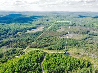 Terre à vendre à Chénéville, Outaouais, Montée du 5e Rang, 20088816 - Centris.ca