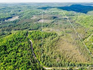 Terre à vendre à Chénéville, Outaouais, Montée du 5e Rang, 23880712 - Centris.ca