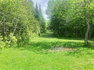 Lot for sale in Saint-Hubert-de-Rivière-du-Loup, Bas-Saint-Laurent, 39, Chemin des Corégones, 10100893 - Centris.ca