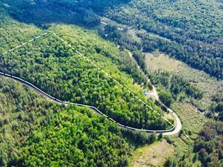 Terre à vendre à Chénéville, Outaouais, Montée du 5e Rang, 16064037 - Centris.ca