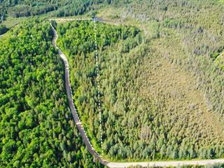 Terrain à vendre à Chénéville, Outaouais, Montée du 5e Rang, 28877841 - Centris.ca