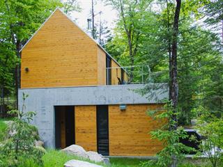 Maison en copropriété à vendre à Lac-Supérieur, Laurentides, 15, Chemin de la Trinité, 24677637 - Centris.ca
