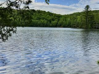 Lot for sale in Amherst, Laurentides, Route  323 Nord, 16658400 - Centris.ca