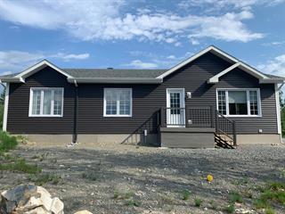 House for sale in Rouyn-Noranda, Abitibi-Témiscamingue, 1327, Rue  Mantha, 24098407 - Centris.ca