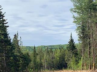 Terrain à vendre à Val-Racine, Estrie, Chemin de Piopolis, 23993848 - Centris.ca