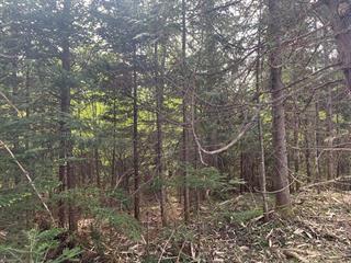 Terrain à vendre à Val-Racine, Estrie, Chemin de Piopolis, 14526622 - Centris.ca