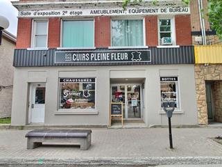 Income properties for sale in Rouyn-Noranda, Abitibi-Témiscamingue, 39 - 41, Rue  Perreault Est, 11857455 - Centris.ca