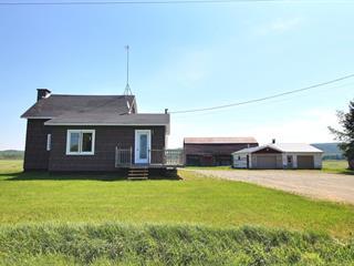 House for sale in La Corne, Abitibi-Témiscamingue, 106, Rang des Montagnes, 28521877 - Centris.ca