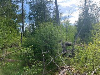 Terrain à vendre à Val-Racine, Estrie, Chemin de Piopolis, 14213090 - Centris.ca