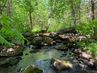 Terre à vendre à Lac-des-Plages, Outaouais, Rang 1, 24516429 - Centris.ca