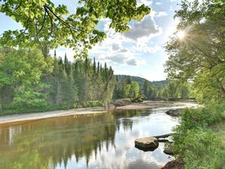 Lot for sale in Mont-Tremblant, Laurentides, Chemin  Champagne, 26144745 - Centris.ca