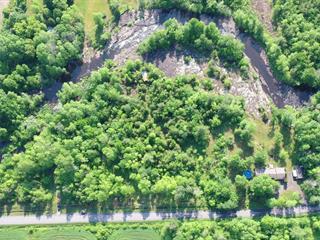 Lot for sale in Hemmingford - Canton, Montérégie, Montée  Jackson, 16381359 - Centris.ca