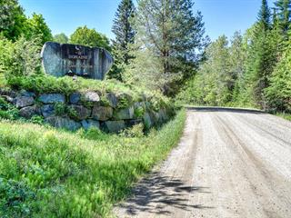 Terrain à vendre à Saint-Donat (Lanaudière), Lanaudière, Chemin du Mont-Jasper, 13918417 - Centris.ca