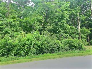 Terrain à vendre à Granby, Montérégie, 877, Rue  Maurice, 11207235 - Centris.ca