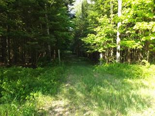 Terrain à vendre à Arundel, Laurentides, Chemin  Twin-Lake, 11492636 - Centris.ca