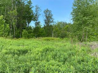 Lot for sale in Shawinigan, Mauricie, Rue  Bellevue, 24314199 - Centris.ca