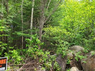 Lot for sale in Chertsey, Lanaudière, Rue  Philippe, 18675919 - Centris.ca