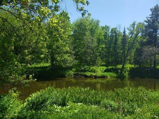 Terrain à vendre à Mayo, Outaouais, Chemin de la Rivière-Blanche, 22227895 - Centris.ca