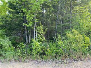 Terrain à vendre à Saint-Joachim, Capitale-Nationale, Rue  Savard, 21356364 - Centris.ca