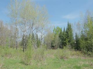 Terre à vendre à Mont-Laurier, Laurentides, Chemin de Val-Limoges, 28621963 - Centris.ca