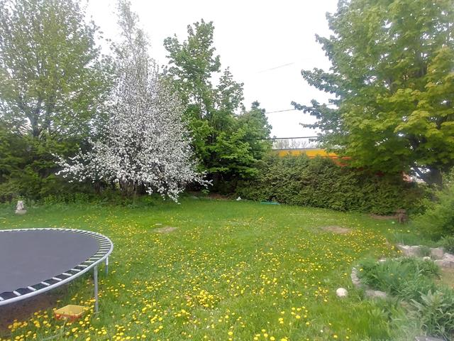 Terrain à vendre à Donnacona, Capitale-Nationale, Avenue  Sainte-Anne, 22560683 - Centris.ca