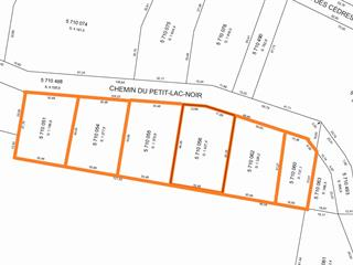 Lot for sale in Wentworth-Nord, Laurentides, Chemin du Grand-Lac-Noir, 16475500 - Centris.ca