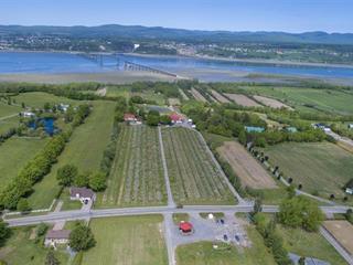 Hobby farm for sale in Saint-Pierre-de-l'Île-d'Orléans, Capitale-Nationale, 1067 - 1068, Chemin  Royal, 10280823 - Centris.ca