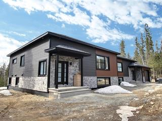 Condominium house for sale in Val-d'Or, Abitibi-Témiscamingue, 183, Chemin de Val-du-Repos, 27018733 - Centris.ca