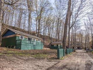 Cottage for sale in Saint-Laurent-de-l'Île-d'Orléans, Capitale-Nationale, 196, Chemin du Côteau, 25142413 - Centris.ca