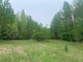Terrain à vendre à Labelle, Laurentides, Chemin  Louis-Gauthier, 21841027 - Centris.ca