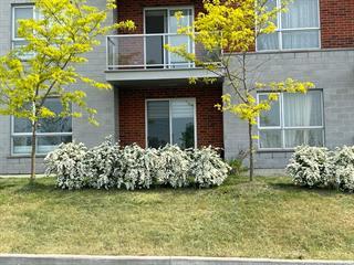 Condo / Appartement à louer à Brossard, Montérégie, 7275, Rue de Lunan, app. 116, 13068585 - Centris.ca