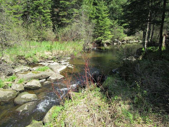 Terrain à vendre à Notre-Dame-des-Bois, Estrie, 128, Chemin du Corbeau, 11640410 - Centris.ca