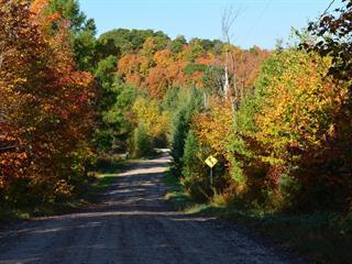 Land for sale in Boileau, Outaouais, Chemin de Brookdale, 25407806 - Centris.ca