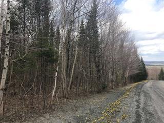 Terrain à vendre à Val-Racine, Estrie, Chemin au Bois-Dormant, 11485838 - Centris.ca