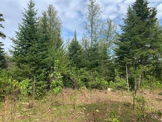 Terrain à vendre à Val-Racine, Estrie, Chemin de Piopolis, 26194161 - Centris.ca