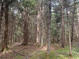 Terrain à vendre à Val-Racine, Estrie, Chemin de Piopolis, 26056809 - Centris.ca