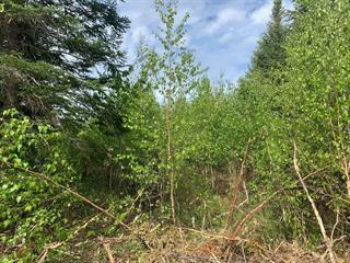 Terrain à vendre à Val-Racine, Estrie, Chemin de Piopolis, 27027259 - Centris.ca