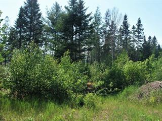 Lot for sale in Shannon, Capitale-Nationale, 257, Rue  Landers, 16987951 - Centris.ca