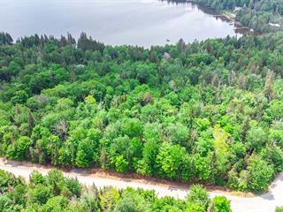 Lot for sale in Entrelacs, Lanaudière, Route  La Fontaine, 13464895 - Centris.ca