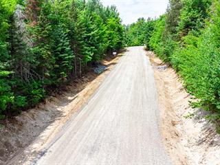 Lot for sale in Entrelacs, Lanaudière, Route  La Fontaine, 20353401 - Centris.ca