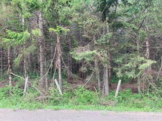 Land for sale in Notre-Dame-des-Bois, Estrie, 8e Rang Ouest, 24046263 - Centris.ca