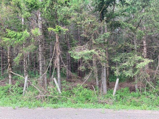 Terre à vendre à Notre-Dame-des-Bois, Estrie, 8e Rang Ouest, 24046263 - Centris.ca